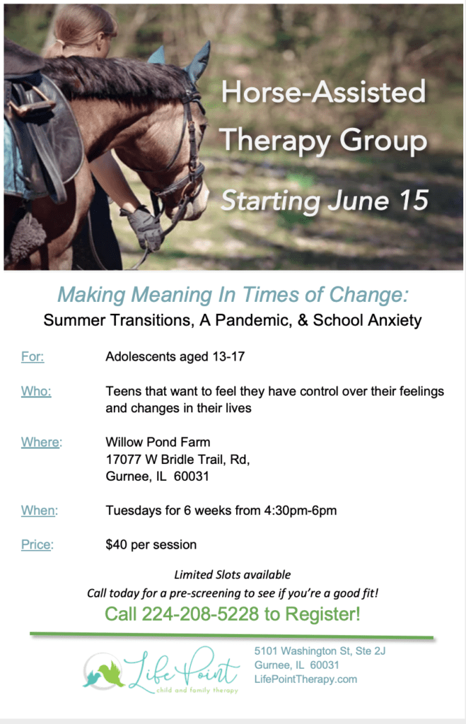 equine group therapy