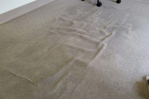 Service Carpet Rippling